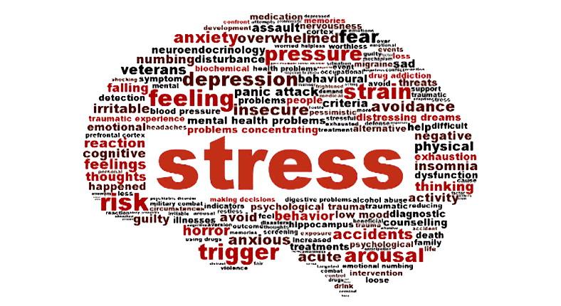 stress-va-mat-ngu