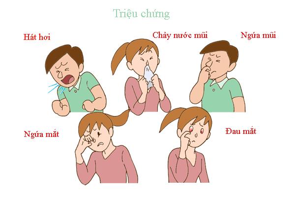trieu-chung-viem-mui-di-ung